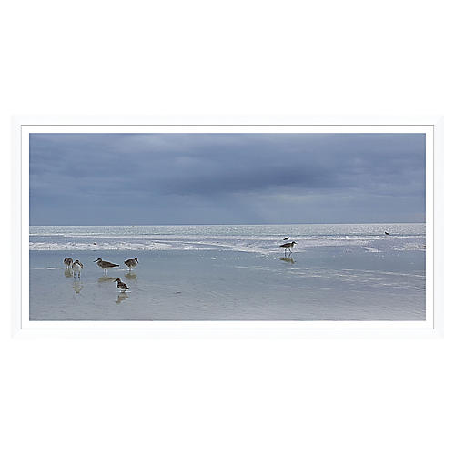 Gulls and the Sea in White Frame