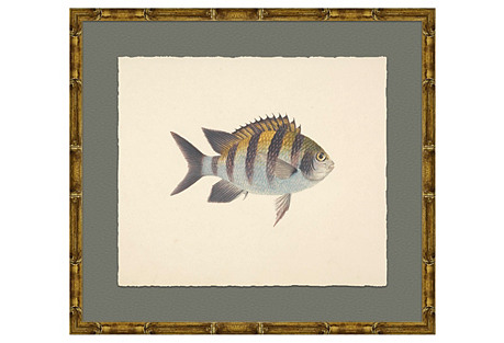 Fish in Bamboo-Style Frame