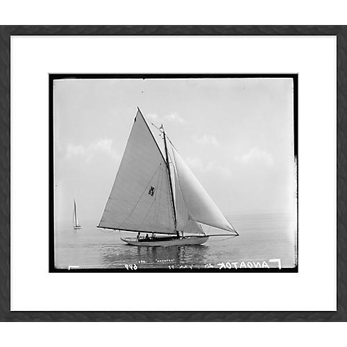 Sailboats I, Soicher Marin