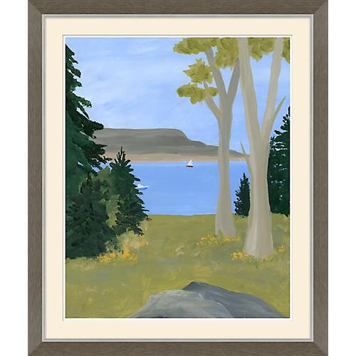 American Landscape IV, Soicher Marin