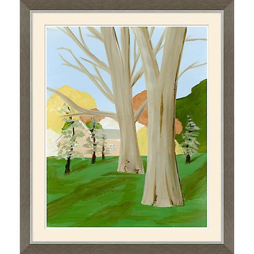 American Landscape V, Soicher Marin