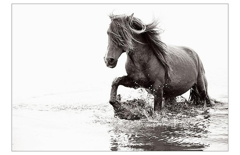 Drew Doggett, Wild Spirit