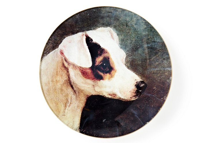 Smooth Fox Terrier Tray