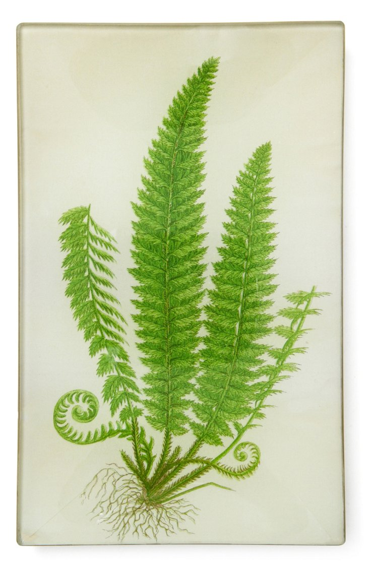 5x8 Holly Fern Tray