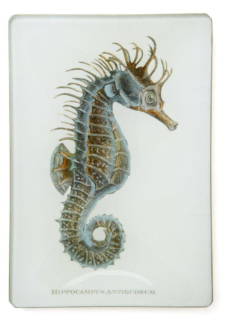 Hand-Decoupaged Sea Horse Tray