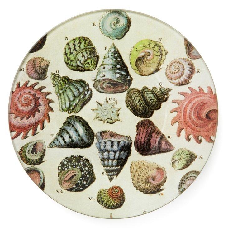 Hand-Decoupaged Limacons Shells Tray