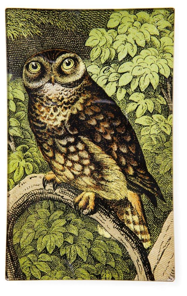 Schubert Owl Tray