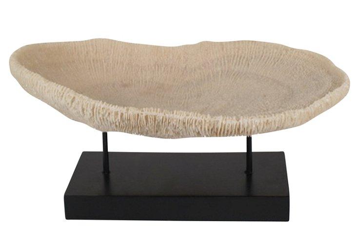 "18"" Coral Objet on Stand, Beige"
