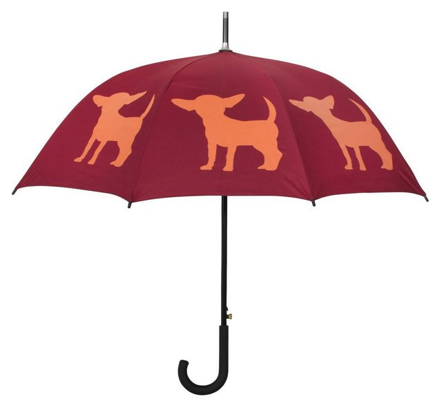 Cane Umbrella, Chihuahua