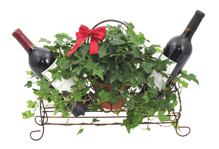 Live Rustic Ivy Wine Caddy