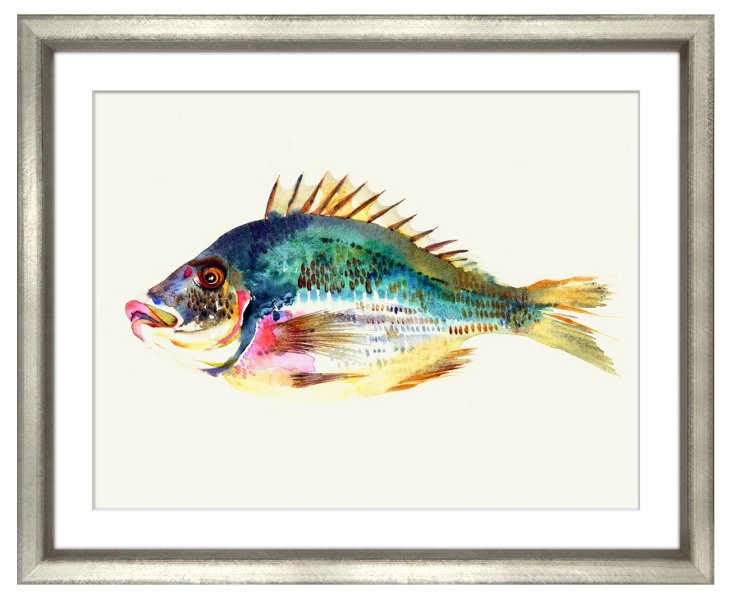 New England Fish II