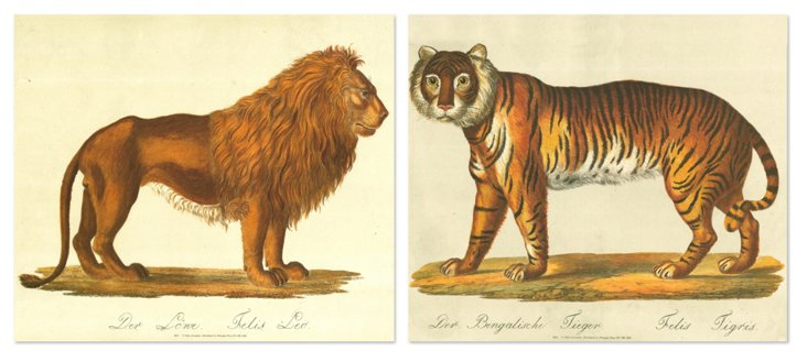 Karl Brodtmann, Animals, Set of Two
