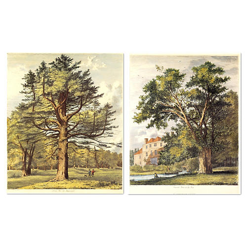 Jacob G. Strutt, Trees II, Set of Two