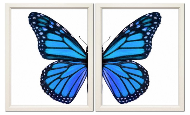 Blue Butterfly Diptych