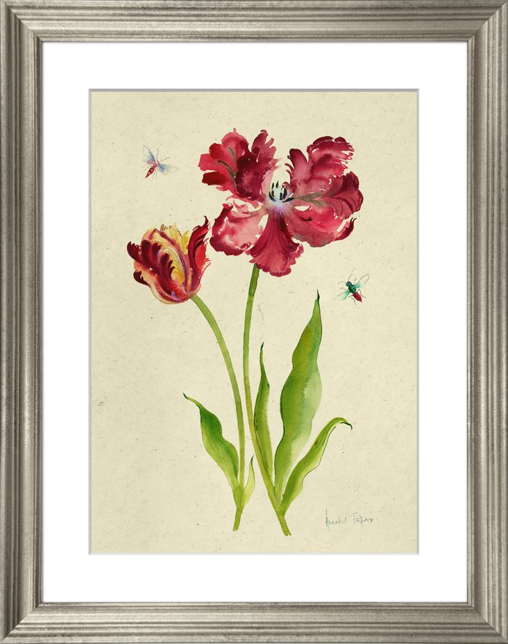 Tulips and Butterflies IV