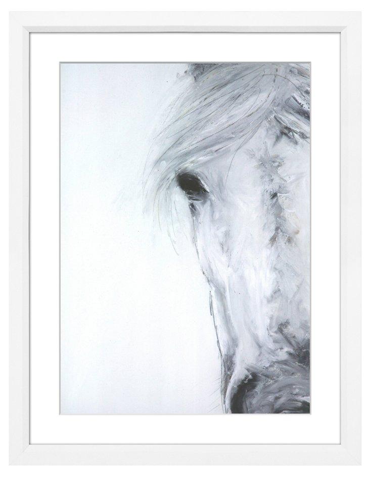 Shy Horse