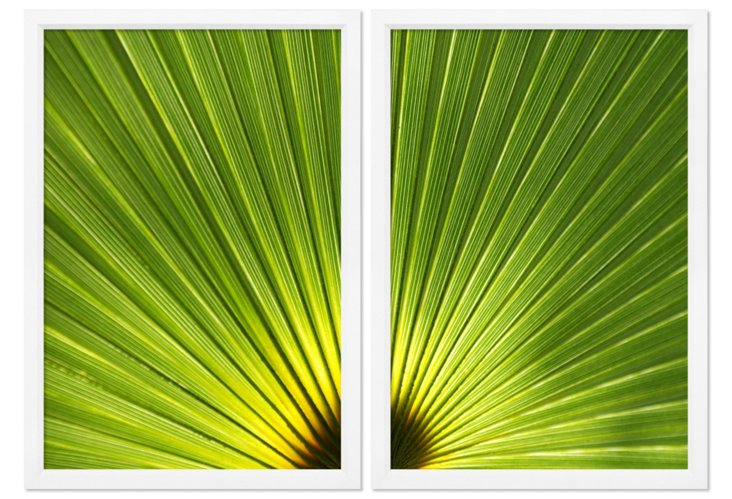 Ben Wood, Temperate Leaf Diptych