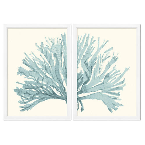 Miranda Baker, Teal Blue Coral Diptych