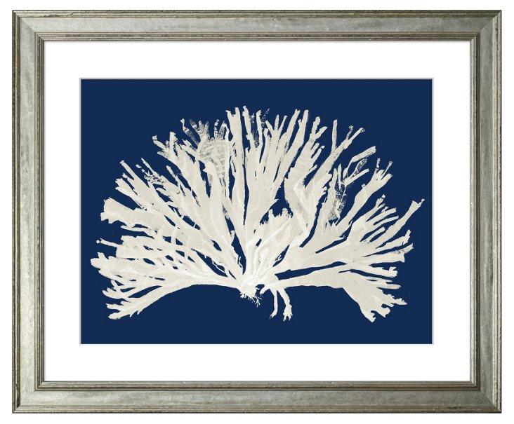 Miranda Baker, Navy Blue Coral I