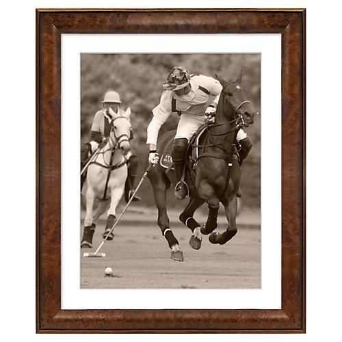 Polo Horses I
