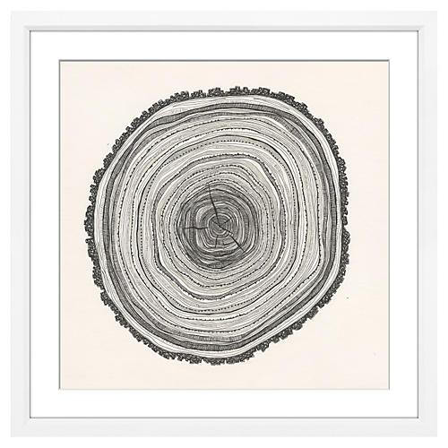 Tree Slice II