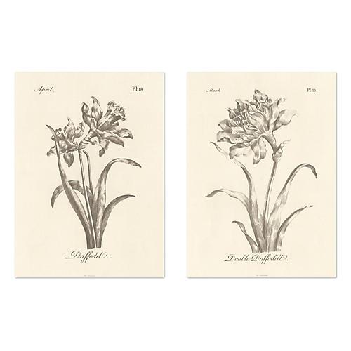 Inked Flowers II