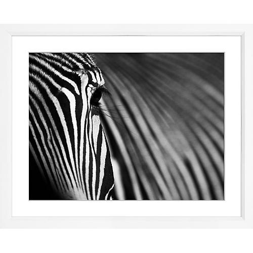 William Stafford, Zebra's Eye