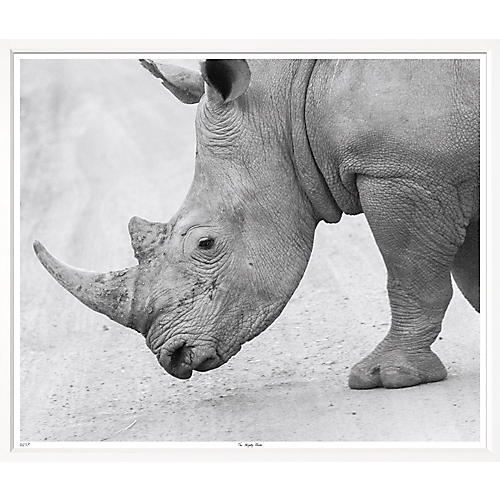 William Stafford, The Mighty Rhino