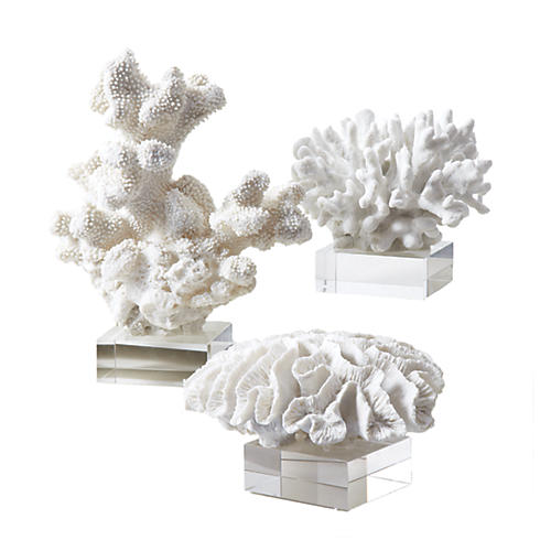 Asst. of 3 Coral Reef Sculptures, White/Clear