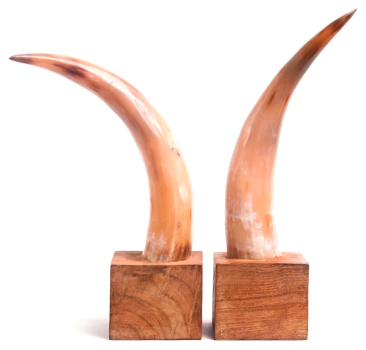 Pair of Horn Bookends, Brown