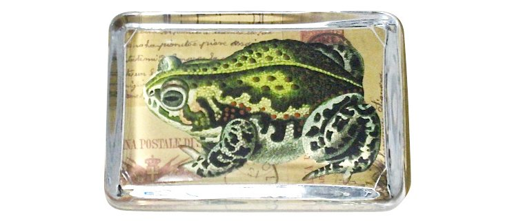 Frog/Postcard Paperweight