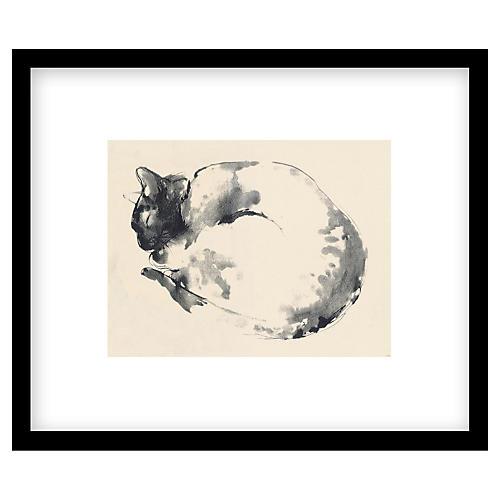 Bella Pieroni, Cat I