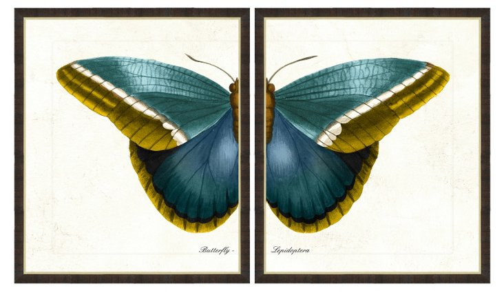 Black-Framed Butterfly Diptych Print I