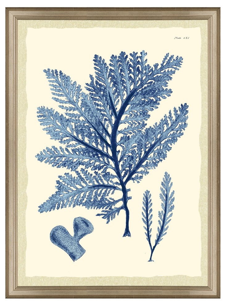 Seaweed Print I