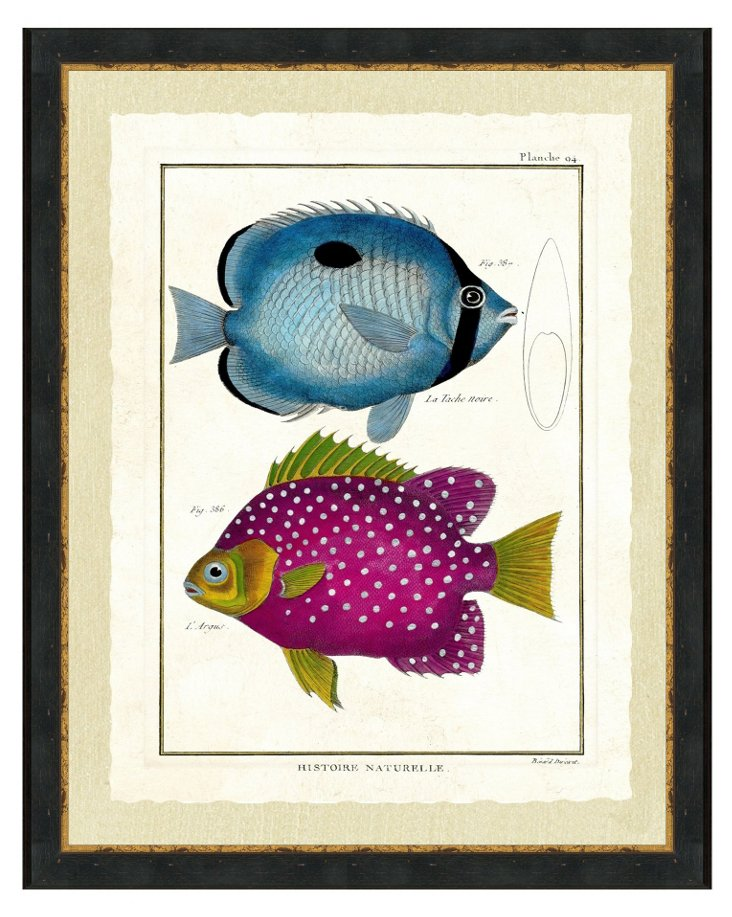 Ebony Wood Framed Double Fish Print II
