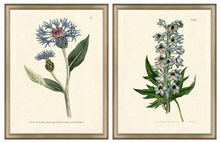 Blue Botanical Diptych