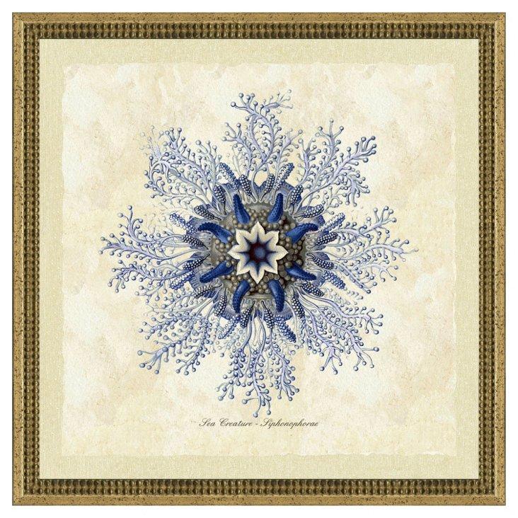 Blue Jellyfish Print II