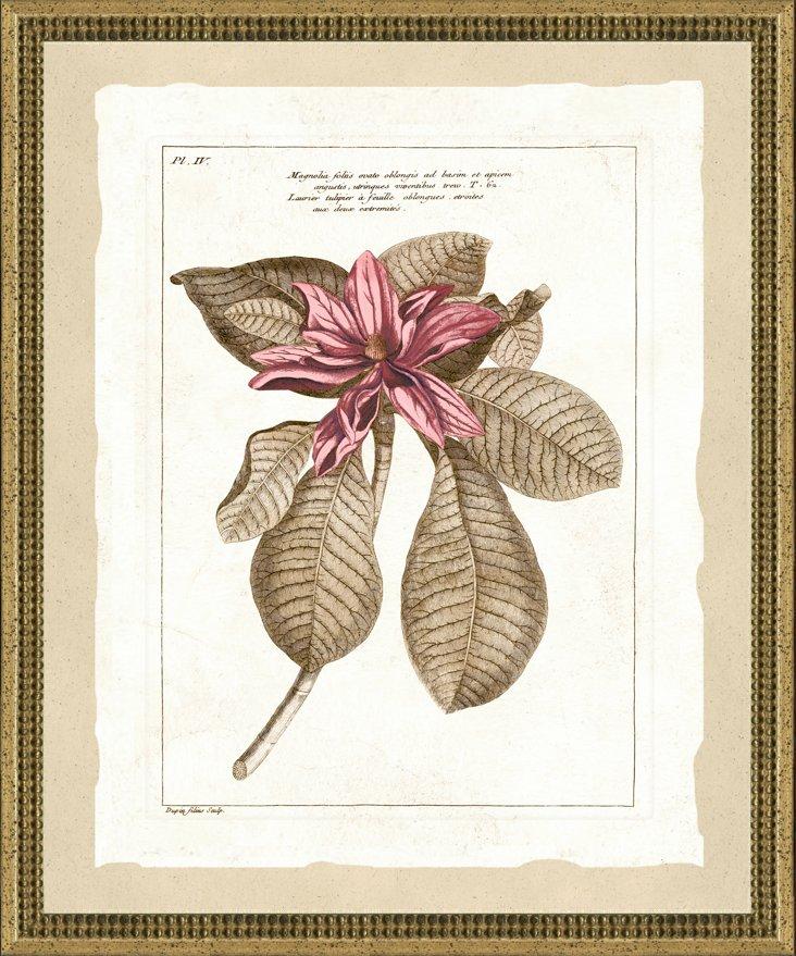 Multitonal Gold-Framed Botanical I
