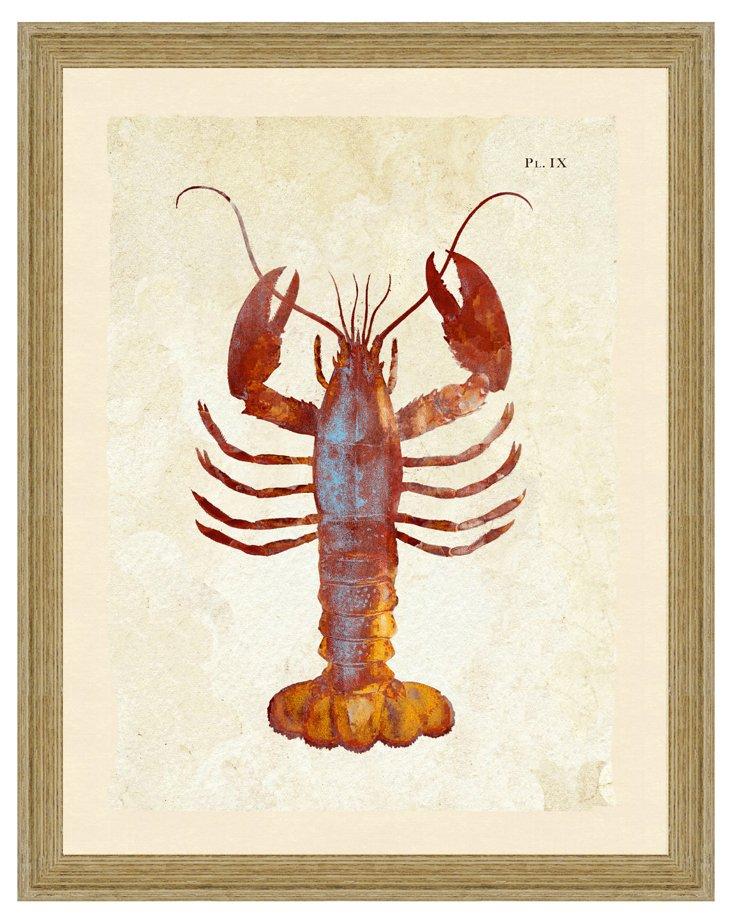 Lobster Print