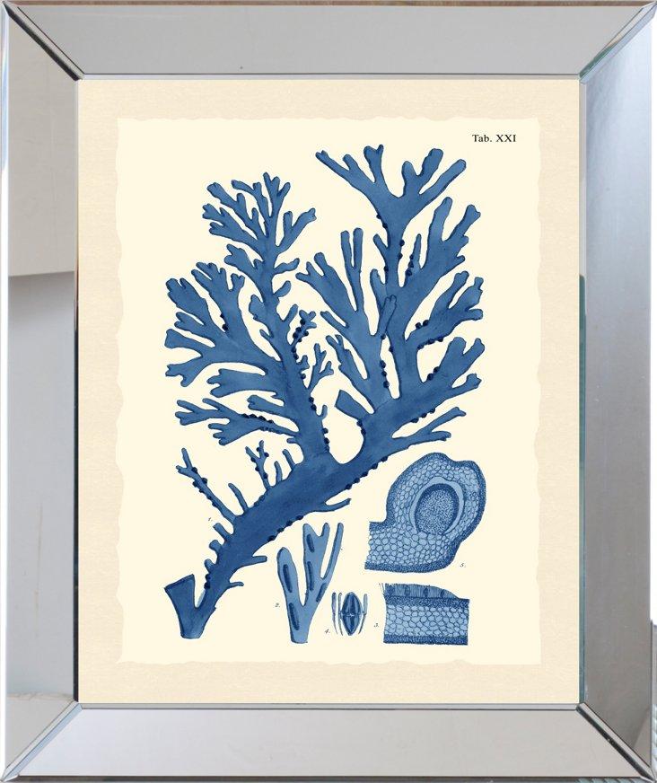 Mirror Framed Blue Seaweed Print II