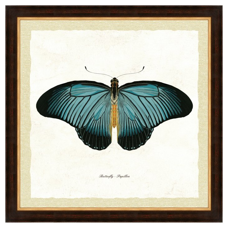 Brown and Gold Framed Butterfly Print I