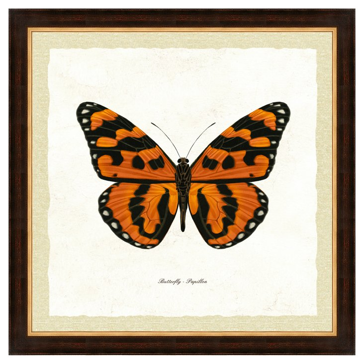 Brown and Gold Framed Butterfly Print II