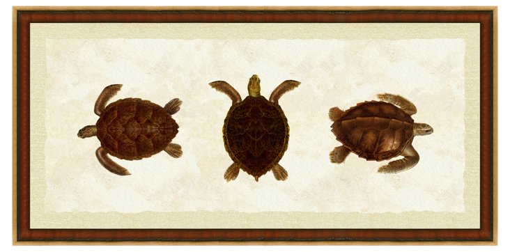 Turtle Grouping Panel