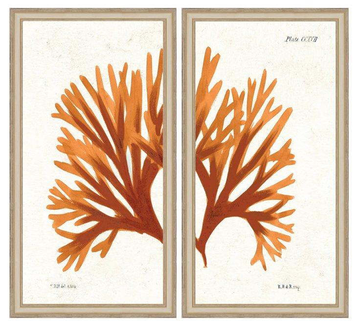 Orange Coral Diptych Print