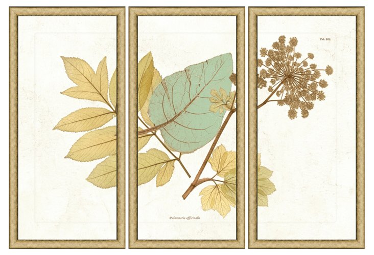 Nature Triptych