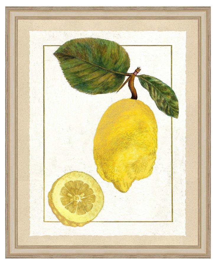 Lemon Print I