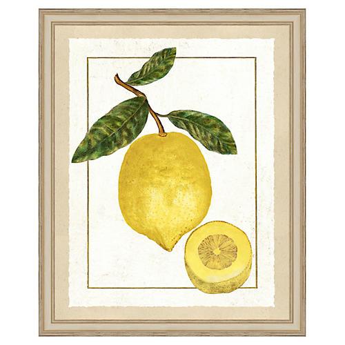 Lemon Print II