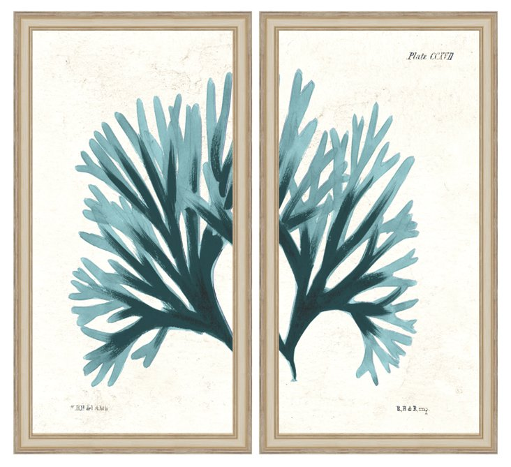 Blue Coral Diptych