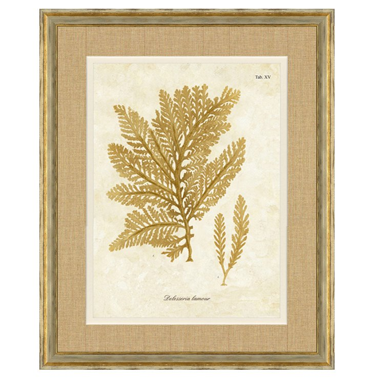Ivory and Gold Framed Seaweed Print