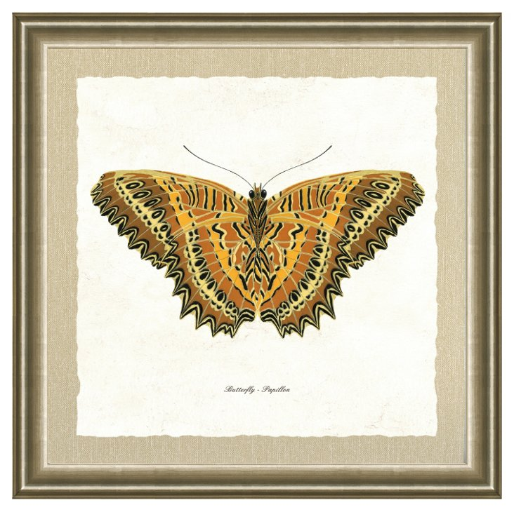 Silver Framed Butterfly Print I